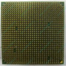 Процессор AMD Sempron 3000+ (1.6GHz) SDA3000IAA3CN s.AM2 (Барнаул)